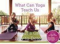 What Can Yoga Teach Us